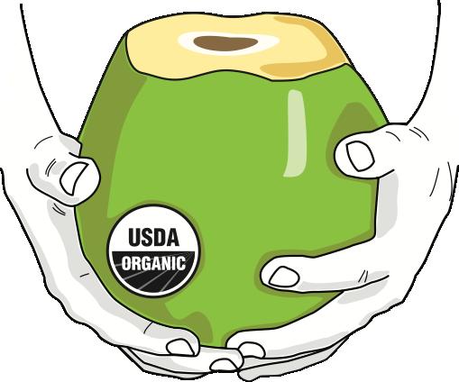 COCO_front_USDA